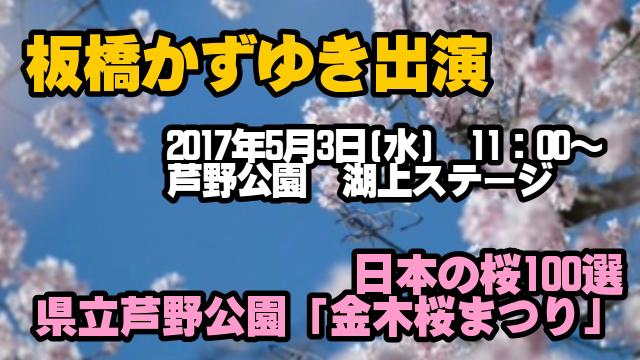 金木桜まつり2017